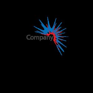 Company Splat